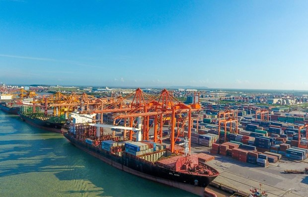 Over 425 million tonnes of cargo handled at seaports in seven months hinh anh 1