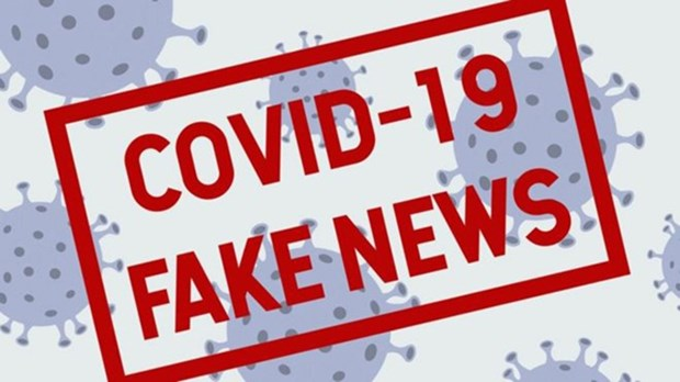 Ministry orders intensifying handling of fake news on COVID-19 hinh anh 1