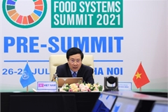 Vietnam hopes to become food innovation hub of Asia: Deputy PM