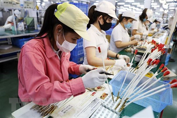 Indian newspaper: Vietnam emerging as post-pandemic economic power in region hinh anh 1