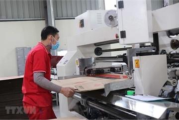 Over 1,100 enterprises in Bac Ninh IZs resume operations