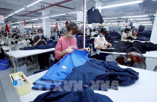 EVFTA - A catalyst for Vietnamese businesses: diplomat hinh anh 1