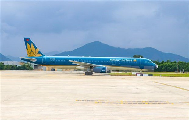 Solutions sought for struggling aviation sector to overcome COVID-19 impacts hinh anh 1