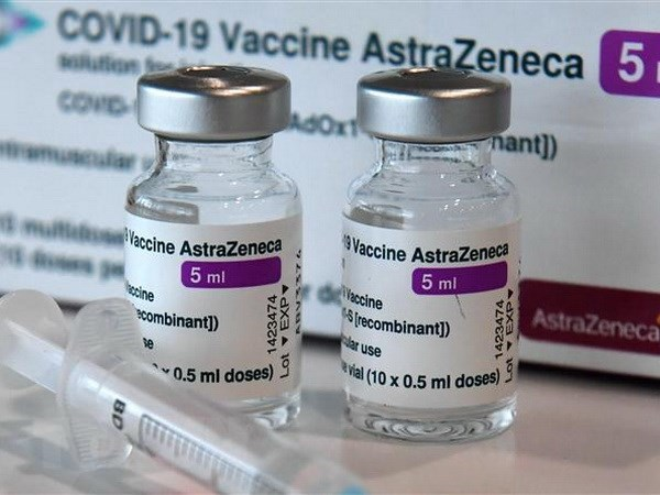 Germany to aid Vietnam with 2.5 million doses of Astra Zeneca vaccine hinh anh 1
