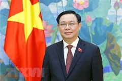 WCSP5: Vietnamese NA joins hands to cope with global challenges