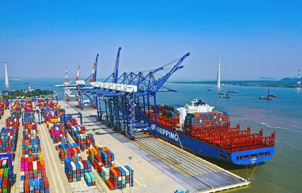 Ports see increase in goods handling despite COVID-19 hinh anh 1