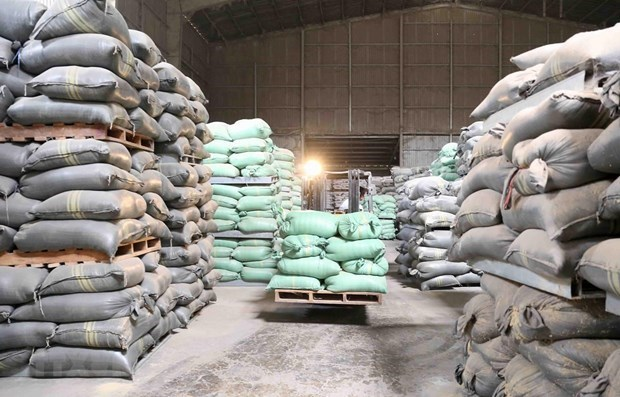 HCM City to receive 56,555 tonnes of rice from national reserve hinh anh 1