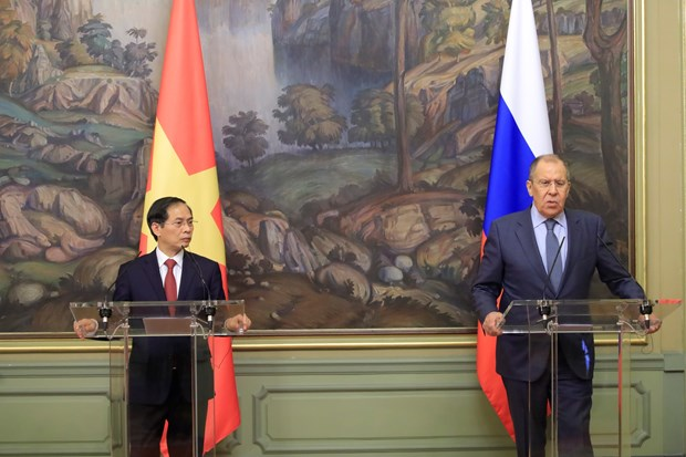 Vietnam - Russia partnership keeps developing dynamically: FMs hinh anh 1