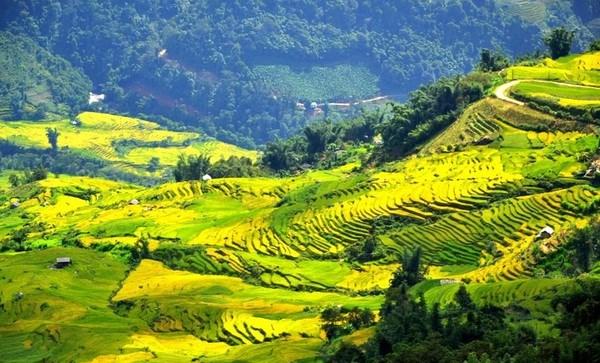 Ngai Thau Thuong – highest village in Vietnam