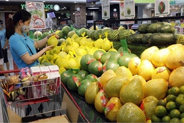 WB lowers Vietnam's GDP growth forecast to 2-2.5 percent this year