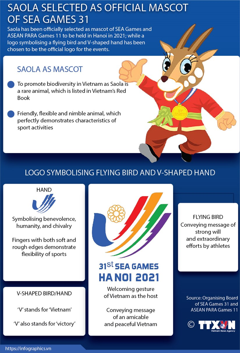 Saola selected as official mascot of SEA Games 31 hinh anh 1