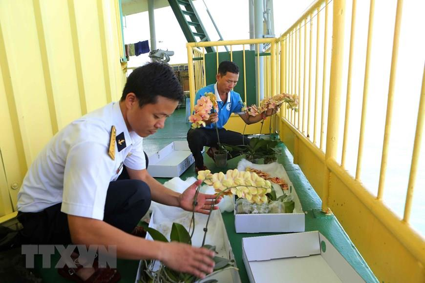 Soldiers on DK1/10 rig prepare orchids to welcome Lunar New Year 2019 (Photo: VNA)