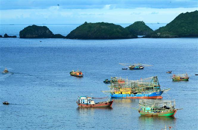 In 2004, Cat Ba Archipelago was declared UNESCO Man and Biosphere Reserve Area in order to protect the multiple terrestrial and aquatic ecosystems as well the diverse plant and animal life that is found on the Island (Photo: VNA)