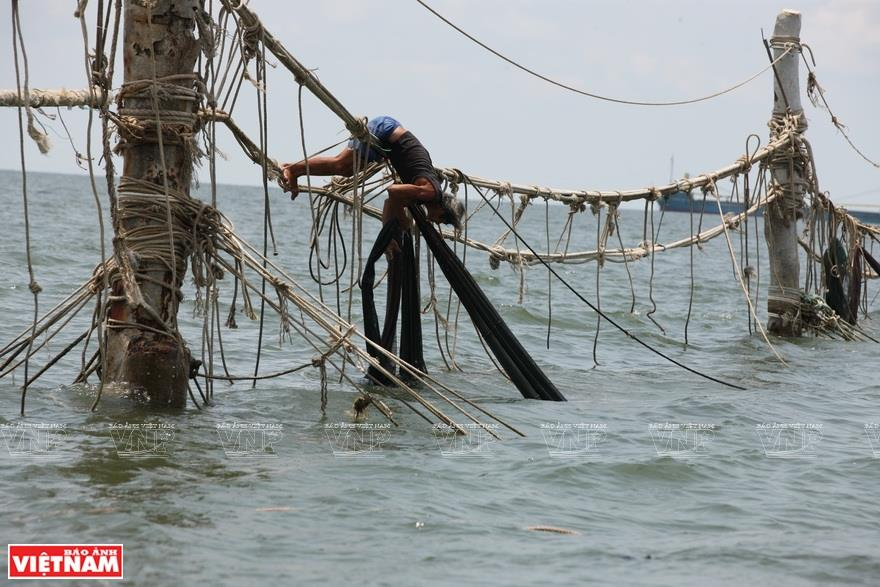 For years, fishermen in Vung Tau have caught fish using nets strung between wooden or concrete poles which are fixed into the seabed at a depth of 15-16 meters (Photo: VNA)