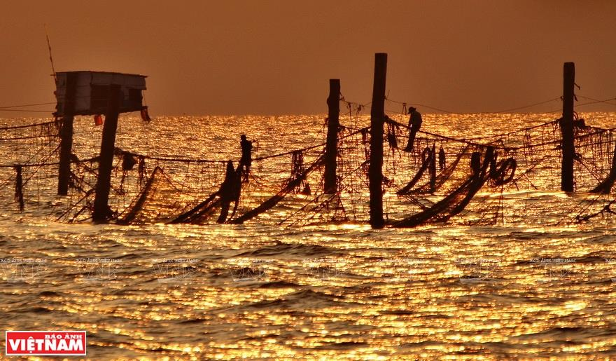 The fishermen walk on rope ties to lay fishing nets at sunset (Photo: VNA)