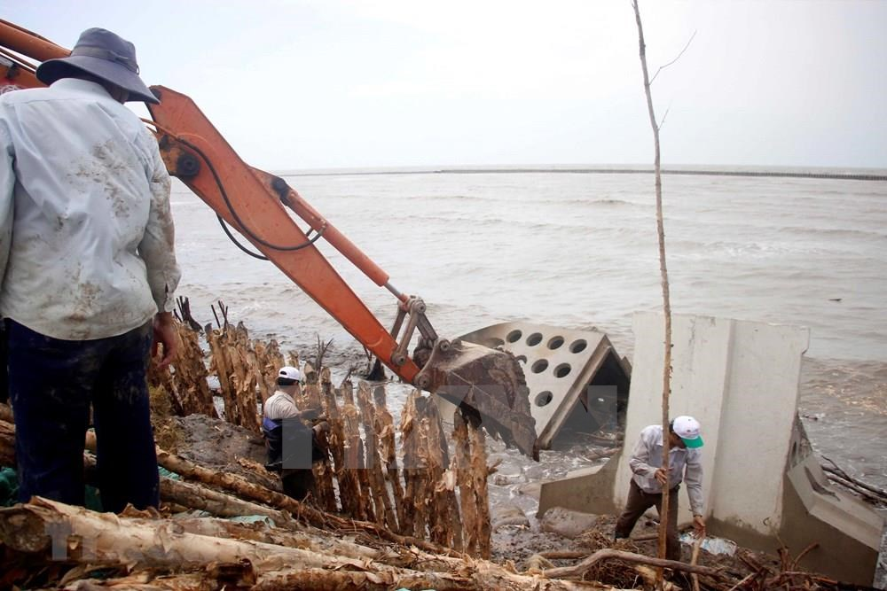 The sea dyke in Tran Van Thoi district on Ca Mau's western coast is at risk of breaching (Photo: VNA)