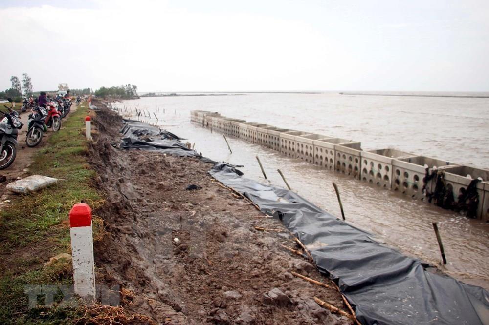 Ca Mau has over 250 kilometres of coastline, of which the western coast is around 108km long (Photo: VNA)