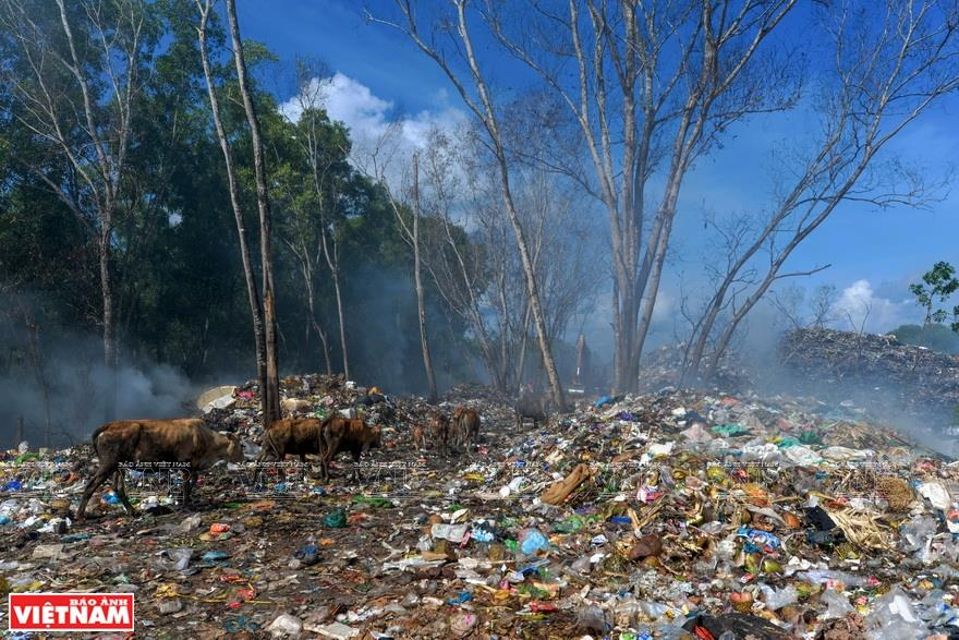 Carrying the message of 'only actions can bring about changes', Hung's photos deeply impress viewers and spread a call for action to tackle plastic waste - a growing environmental disaster (Photo: VNA)