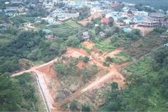 Giải tỏa khu vực bị phân lô bán đất rừng trái phép tại Đà Lạt