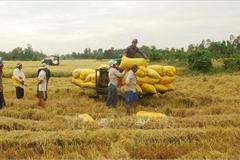 Ngành nông nghiệp: Chuyển đổi mô hình tăng trưởng, thúc đẩy CNH, HĐH