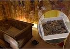 Lí do lăng mộ vị Pharaoh nổi tiếng nhất Ai Cập ngập tràn đồ ăn