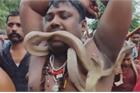 Bất chấp đại dịch, dân Ấn Độ tụ tập diễu hành cùng rắn
