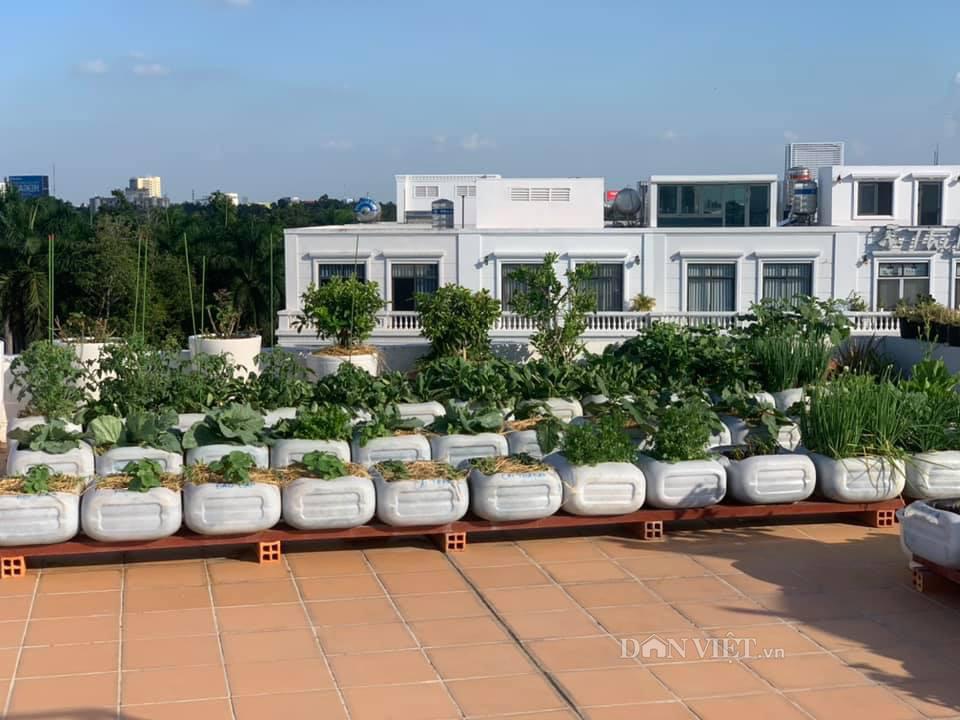 Tận dụng can nhựa mẹ đảm Cần Thơ biến sân thượng thành khu vườn xanh mát - Ảnh 1.