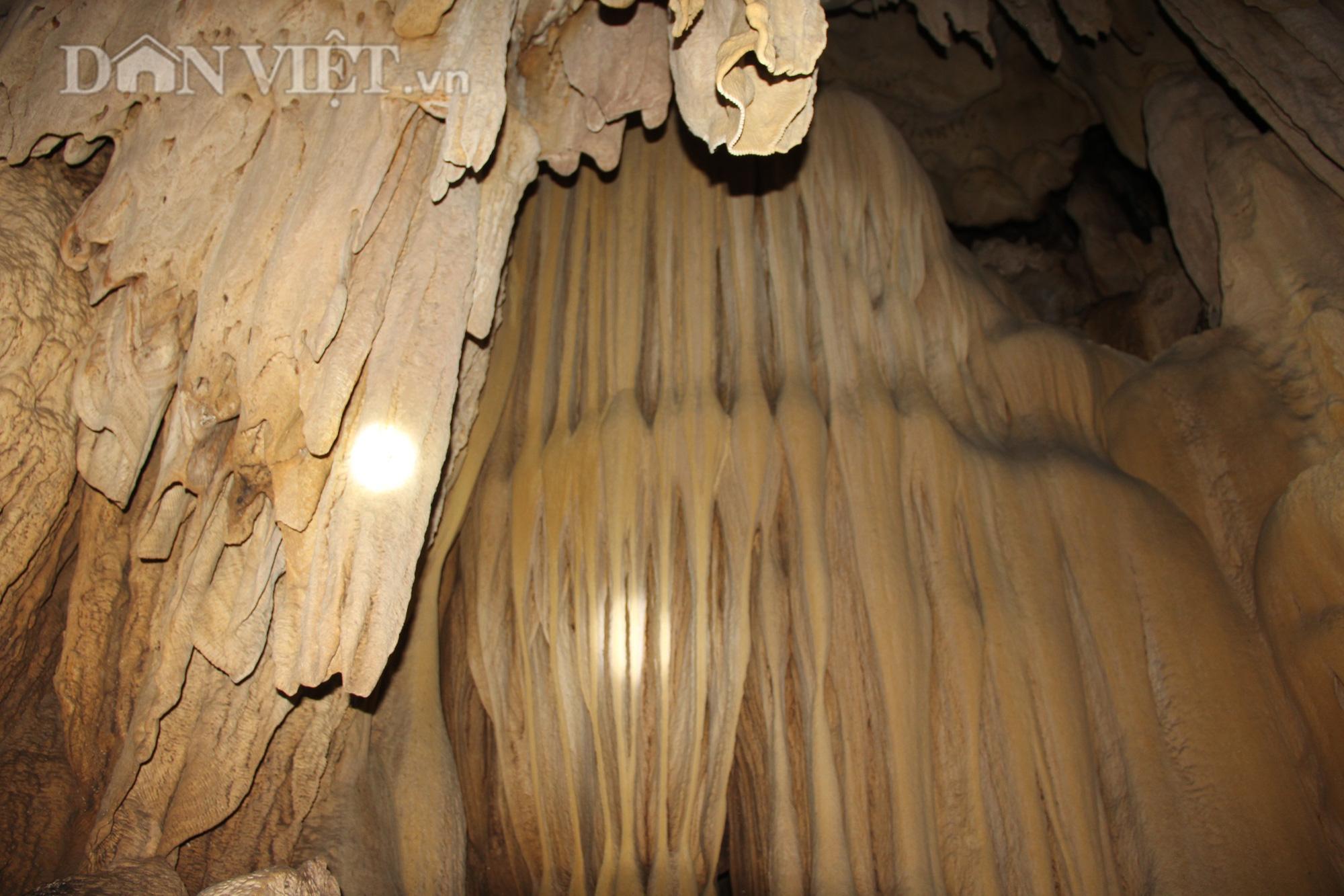 Quảng Trị: Phát hiện hang động mới, đẹp lung linh ở thôn Trỉa - Ảnh 9.