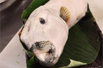 Đặc sản cá mặt thỏ thịt ngon, giá đắt đỏ, có độc ra sao?