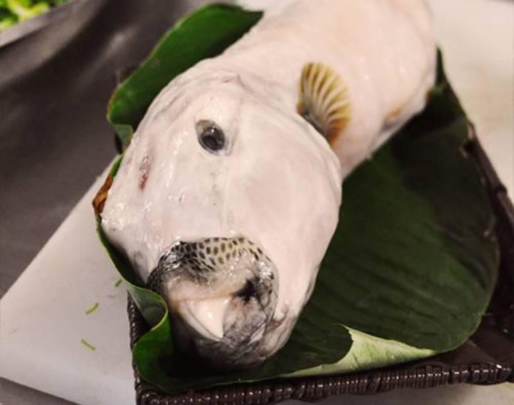 Cảnh báo: Đặc sản cá mặt thỏ đắt đỏ có độc như thế nào? - Ảnh 1.