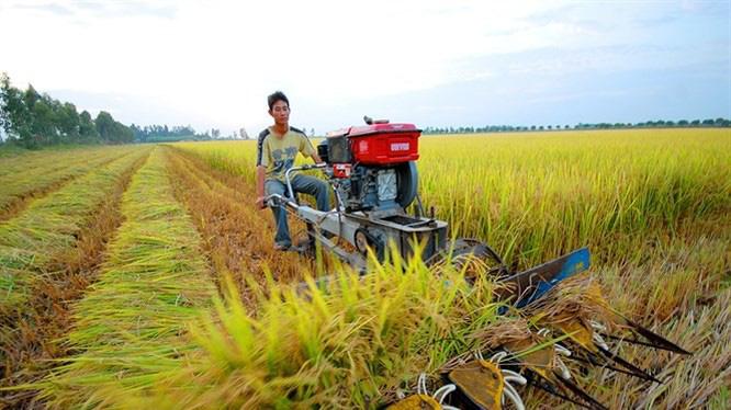 Năm 2021, chuyển nhượng đất nông nghiệp có phải nộp thuế thu nhập cá nhân? - Ảnh 1.