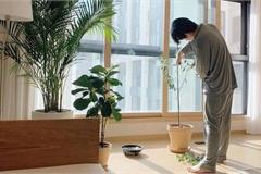Bí quyết giữ cho ngôi nhà sạch tinh tươm, không tì vết của vợ chồng trẻ người Hàn Quốc