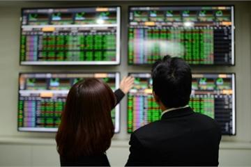 """Doanh nghiệp làm ăn lỗ, cổ phiếu vẫn tăng """"sốc"""""""