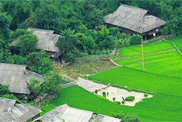 Vietnam terraced fields in the pouring-water season
