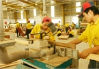 Vietnam, a rising star in wood exports