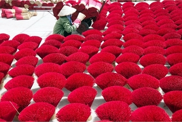 Visiting incense-making Quang Phu Cau village