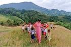 Vietnam's beauty in pictures
