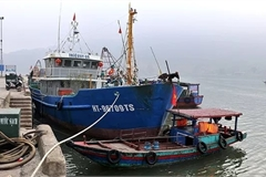 Ha Tinh fishermen go out to sea after Tet holiday