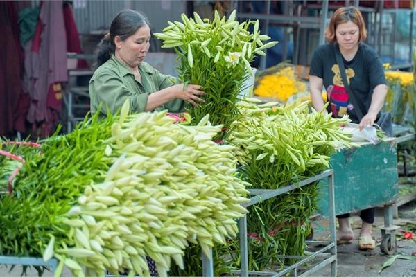 White lilies greet April in Hanoi