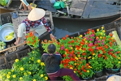 Floating flower markets a harbinger of spring