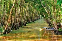 Splendid natural spot in Vietnam's southernmost region