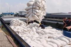 Trade Ministry proposes normal rice exports from May 1