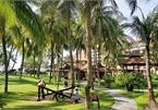 VNAT rules on coronavirus reporting at hotels, resorts raise eyebrows