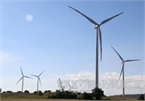 Ministry proposes extending feed-in tariffs for wind power until end-2023
