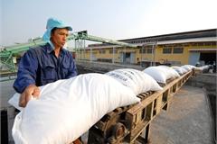 Philippine pivot does not impact on Vietnamese rice export