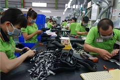 Productivity should be put at center of Vietnam's development strategy: WB