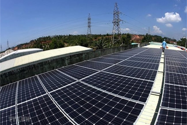 Vietnamese firms show interest in developing renewable energy