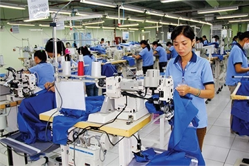 Vietnam apparel firms won't see instant benefits from EVFTA