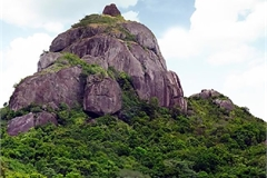 Mystery about a Champa tower which falls into oblivion
