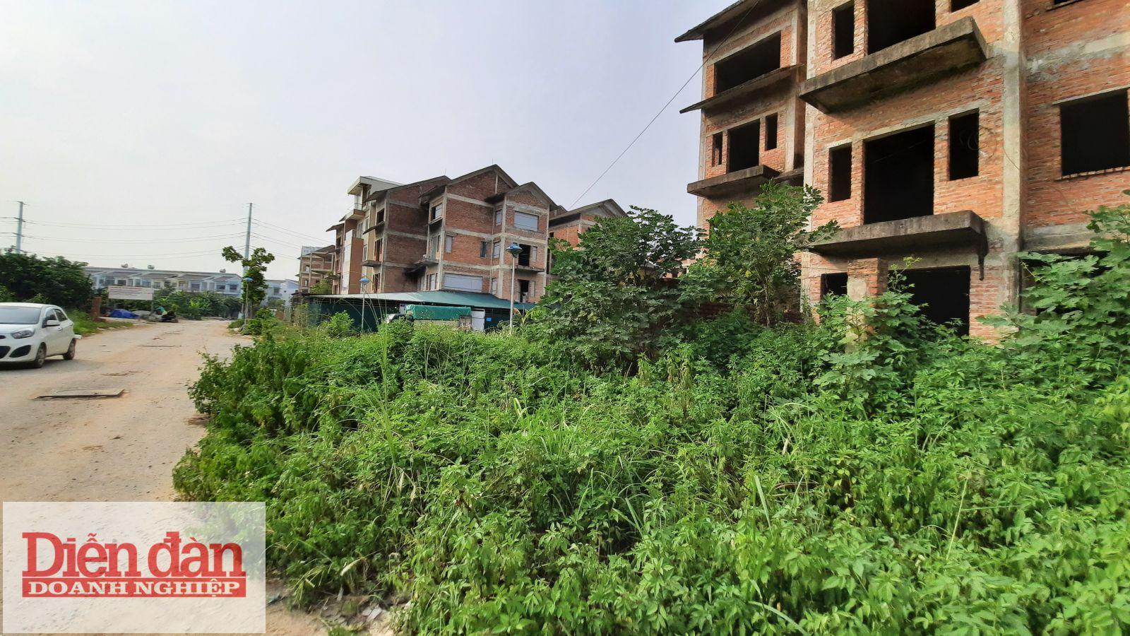 Rất nhiều biệt thự bị bỏ hoang nhiều năm trong dự án Foresa Villa